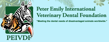 Logo der Peter Emily International Veterinary Dental Foundation